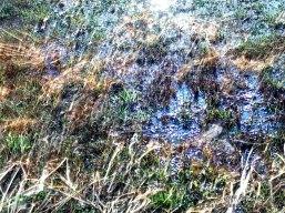 Wasser & langzeitbelichtung einer ausgetrocknete Wiese